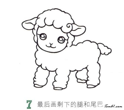 小绵羊7图片_学习简笔画_少儿图库_中国儿童资源网