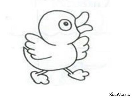 鸭子15图片