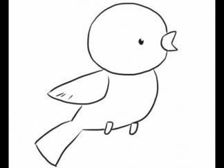 小鸟145