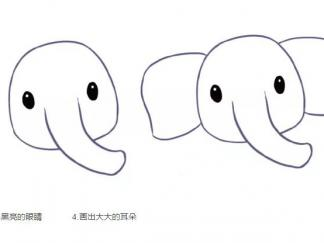 大象212