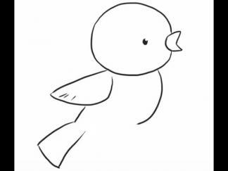 小鸟144