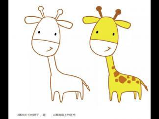 长颈鹿172