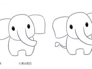 大象213