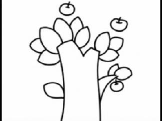 苹果树53