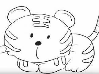 可爱老虎5