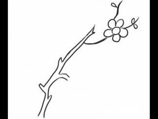 漂亮的梅花2