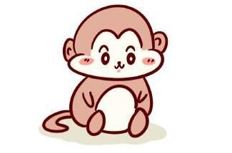 可愛的猴子