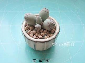海豹水泡粘土小多肉的彩泥橡皮泥制作教程图解