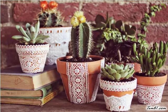 花盆的廢物利用的創意制作圖解教程