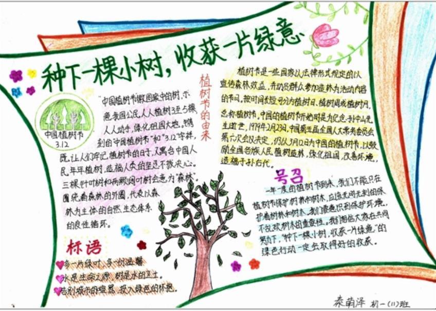 种下一颗小树收获一片绿意手抄报版面设计图图片
