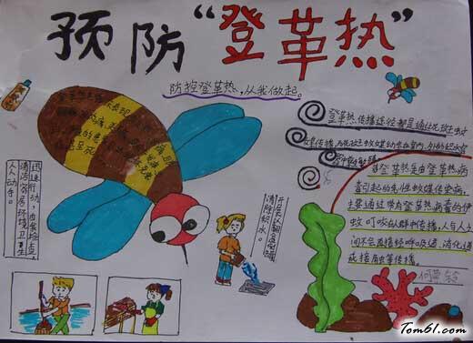 关于小学生简单的灭蚊防病健康你我手抄报,怎么作预防登革热的手抄报
