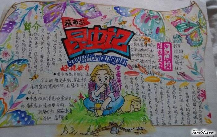 昆虫记语文手抄报版面设计图