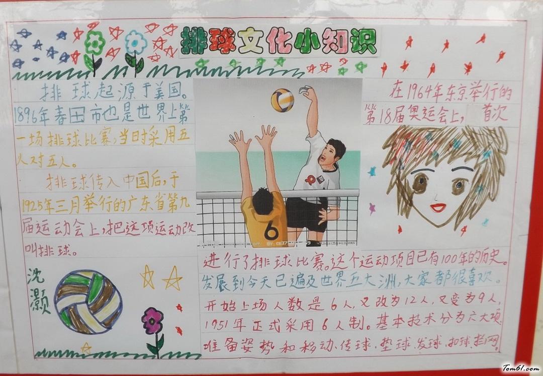 排球文化小知识手抄报版面设计图图片