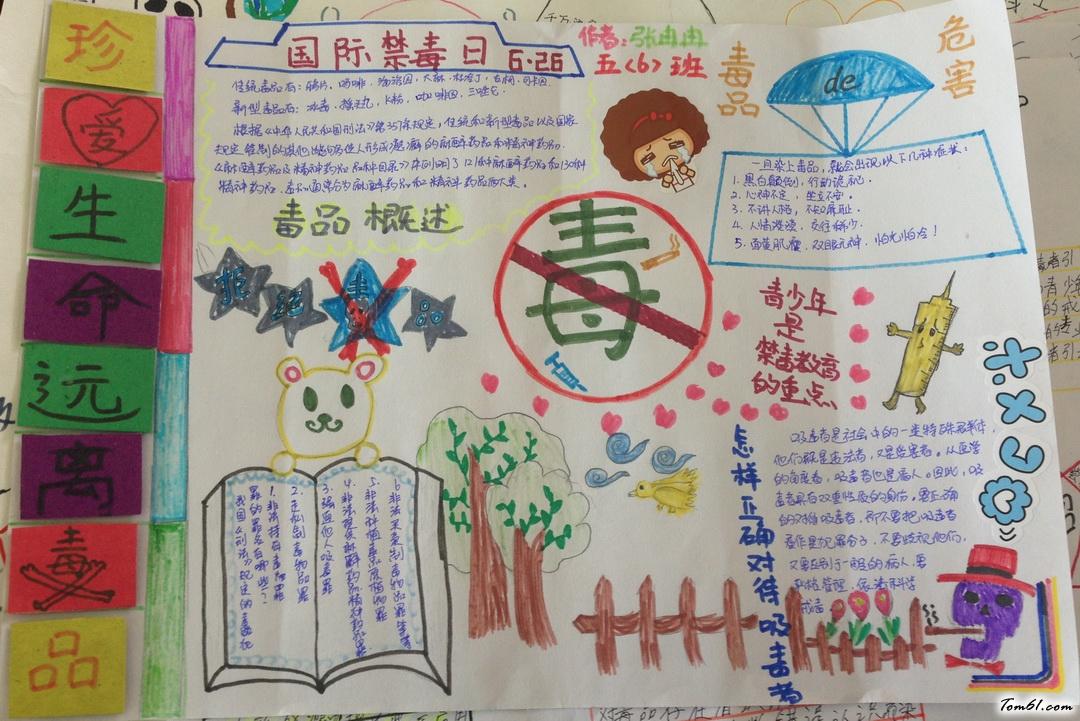 6.26禁毒日手抄报版面设计图