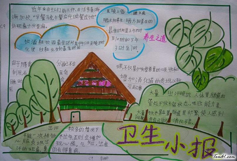 五年级卫生手抄报版面设计图