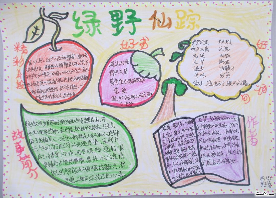 四年级手抄报囹�a�i)�aj_四年级绿野仙踪手抄报版面设计图3