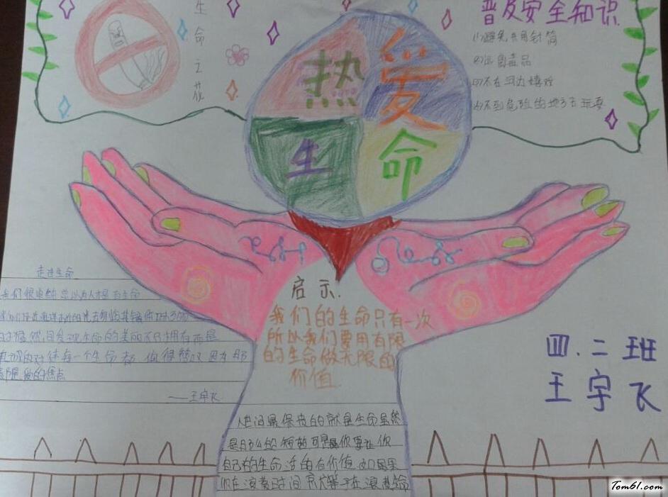 小学生热爱生命手抄报版面设计图