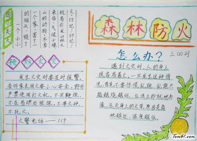 清明节森林防火手抄报版面设计图2图片