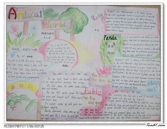 动物园的小学生英语手抄报版面设计图