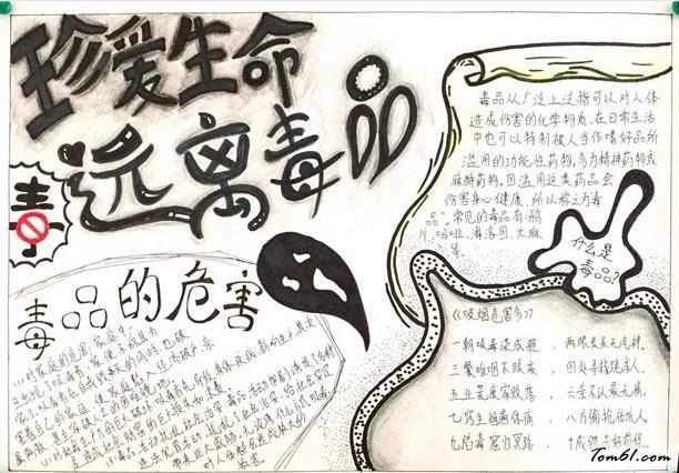 小学生禁毒手抄报版面设计图3