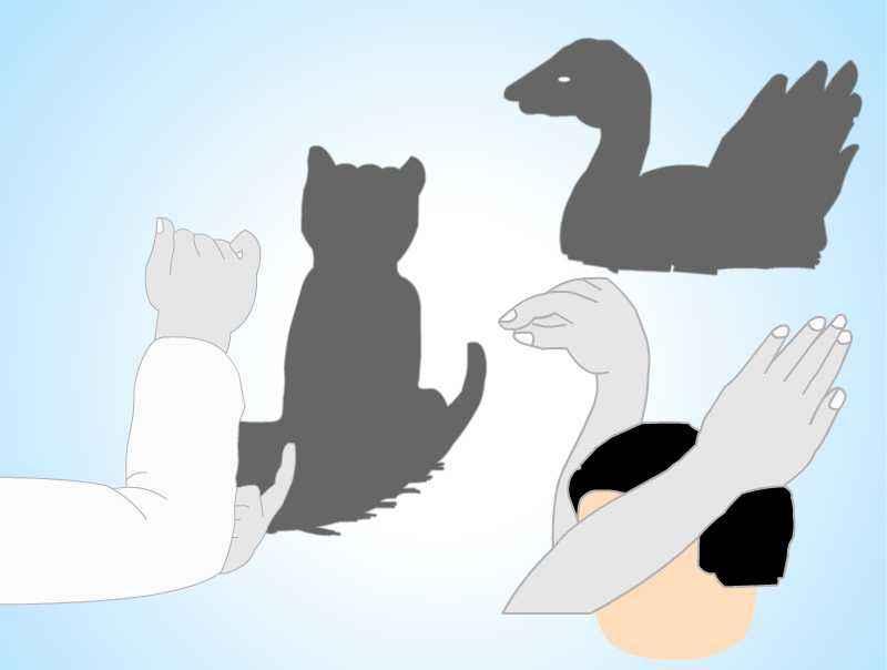 猫和鹅_儿童手影_手工制作大全_中国儿童资源网