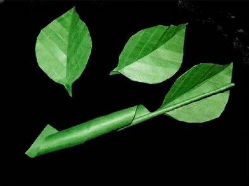 树叶2的折纸图解与方法教程_折纸大全_手工制作大全