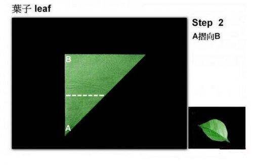 树叶3的折纸图解与方法教程_折纸大全_手工制作大全