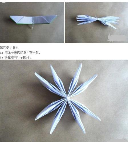 折纸花步骤大全 睡莲图片7