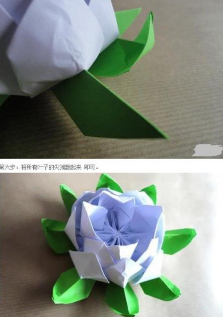 折纸花步骤大全 睡莲图片9
