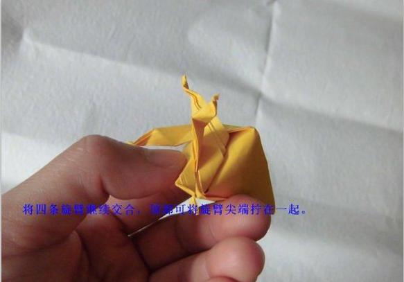 珠光海螺的折纸步骤图片12