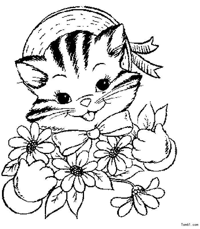 小猫 简笔画图片 中国儿童资源网