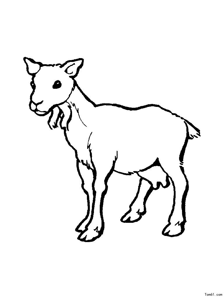 小兔子舞蹈_羊图片_简笔画图片_少儿图库_中国儿童资源网