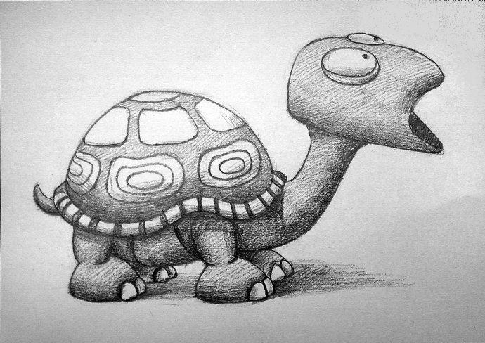 小乌龟-素描图集
