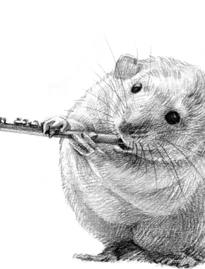 老鼠-素描图集