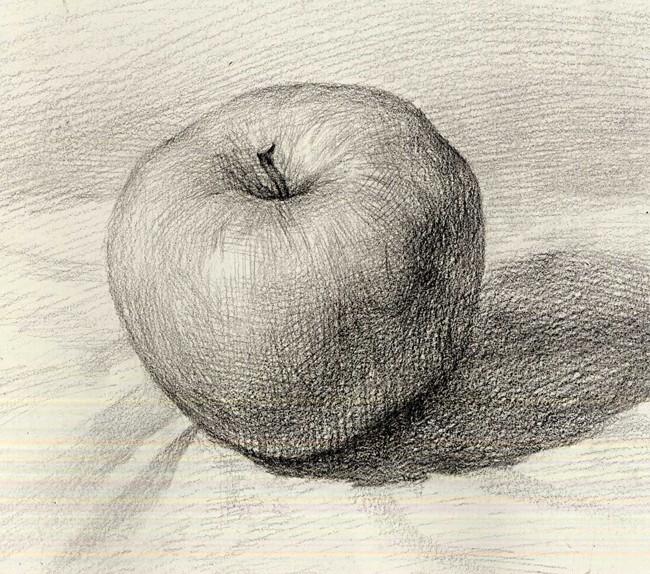 苹果-素描图集