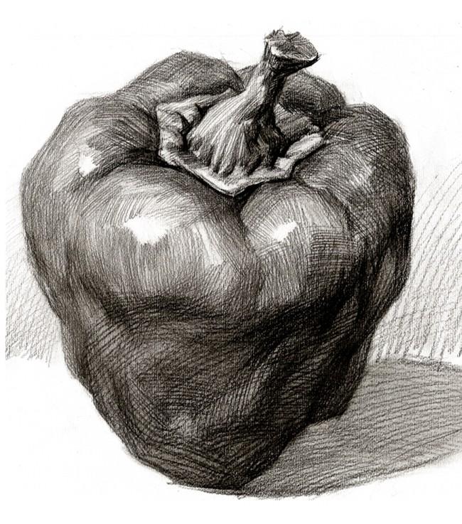 青椒-素描图集图片_儿童素描_少儿图库_中国儿童资源网
