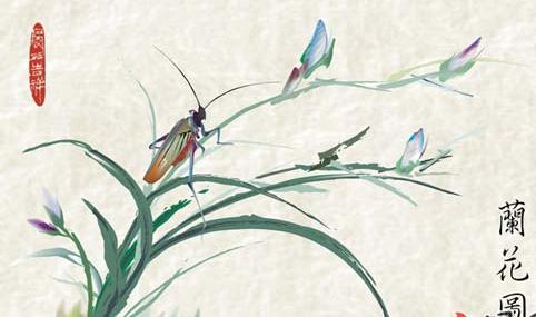 兰花-水彩画图集