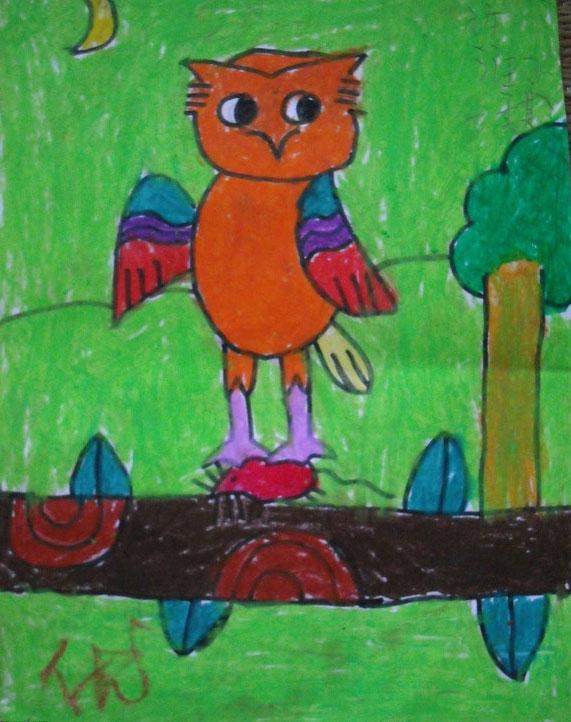 猫头鹰-水彩画图集
