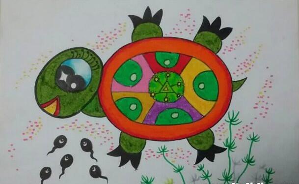 乌龟-蜡笔画图集6