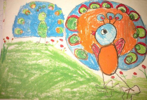 孔雀-蜡笔画图集3