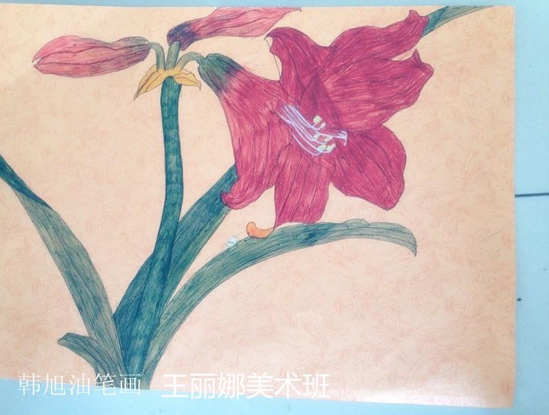 花朵-蜡笔画图集7