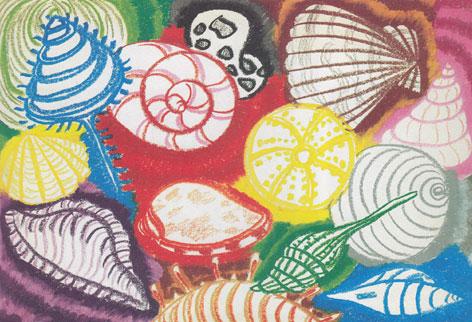 贝壳-蜡笔画图集