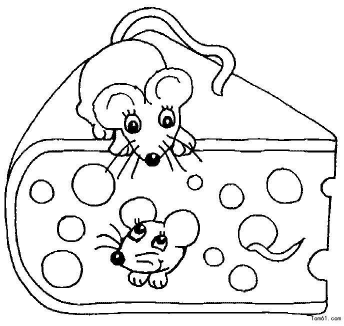 老鼠的画法步骤