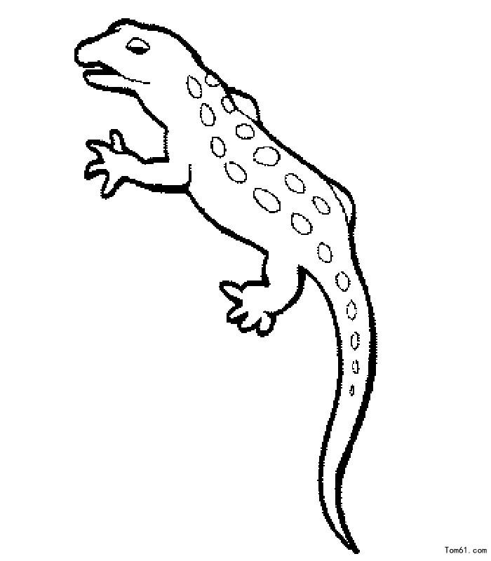 蜥蜴图片_简笔画图片_少儿图库_中国儿童资源网