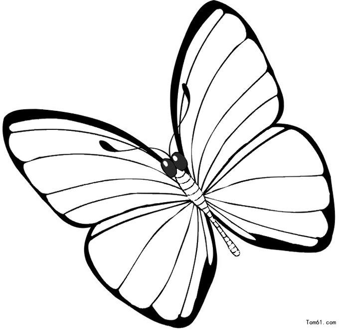 蝴蝶图片_简笔画图片_少儿图库_中国儿童资源网图片