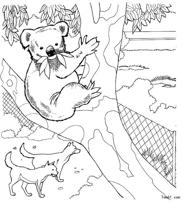 动物园-简笔画图片-中国儿童资源网