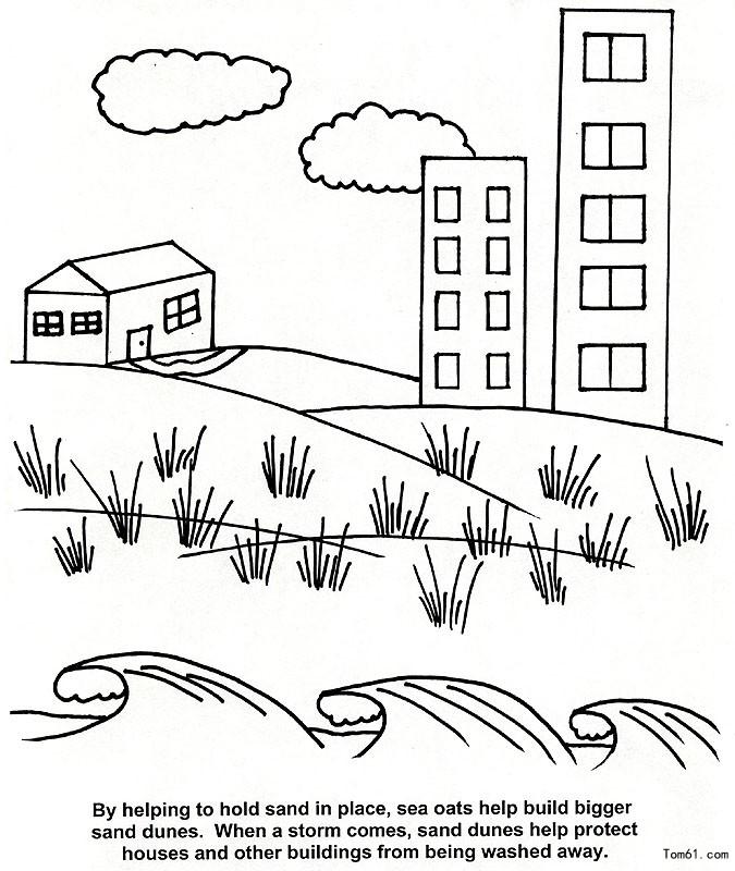 海洋风景-简笔画图片-中国儿童资源网