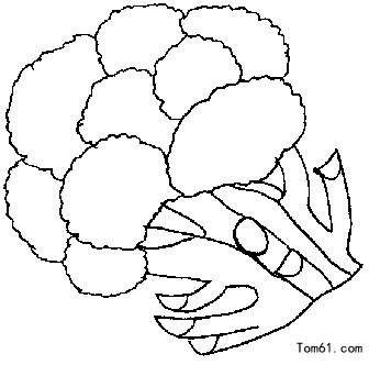 蔬菜图片_简笔画图片_少儿图库