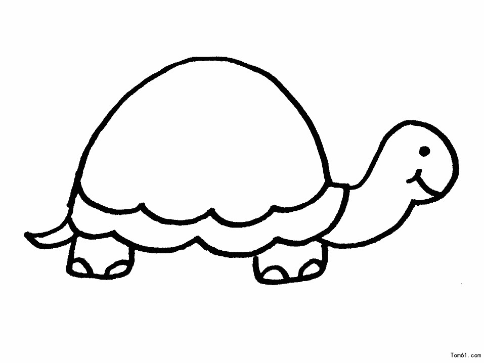 shapes turtle coloring pages - photo#16