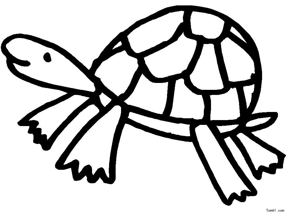 乌龟图片_简笔画图片_少儿图库
